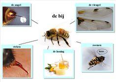 Miniatuurafbeelding voor de versie van 21 apr 2014 om 13:46 Easy Writing, Bee Happy, Math Activities, Projects To Try, School, Kids, Fauna, Montessori, Dutch