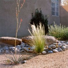 Xeriscape with Rock and Plants