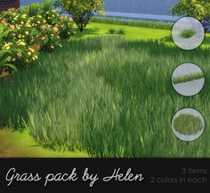 Sims 4 CC's - The Best: Grass Pack by Helen