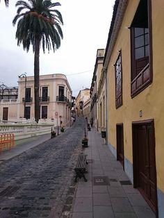 Canarische eilanden;  Tenerife; La Oratava
