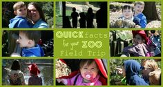 printable zoo animal trivia for kids mfw adv 19