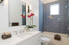 Orchids are ideal bathroom plants The Best Bathroom Plants For Your Interior