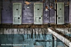 Cane Hill Seclusion Cells.If Walls Could Whisper Photography.  (Yeah, Secluded much?) #abandoned