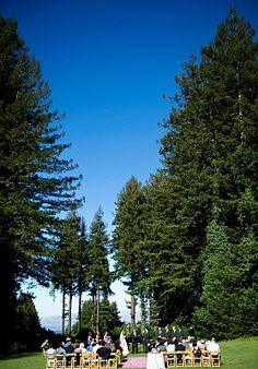 The Colas wedding ceremony location under the redwood trees, overlooking the San Francisco Bay at The Mountain Terrace in Woodside, CA