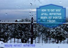 Find out some easy ways to winterize your place and keep your animals warm!