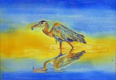 Great Blue.  Watercolor on Paper.
