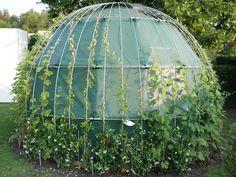 Dome #newdesign #gardenhouse #tuinberging