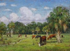 cracker cows were as wild as whitetail deer and grazed across Florida by the hundreds of thousands at one time.