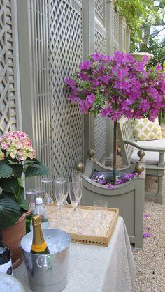 lattice fence & planter