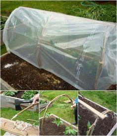 Entièrement Fonctionnel Set ✔✔✔ arrosage automatique système pour légumes et le jardin