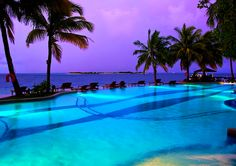 Yes pleaseeee palm trees & a pool
