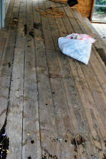 Prairie Scraps: When life happens, just add vinegar!      use vinegar to get rid of urine smell on deck