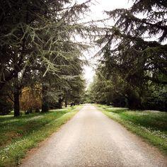 Parco di Villa Rangoni Spilamberto(Mo) - Italy