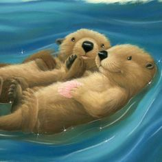 If there's something cuter than a sea otter, I've never seen it.  (by Tina MacNaughton)