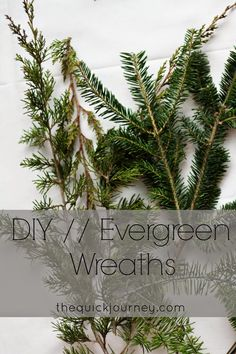 The Quick Journey: DIY   Evergreen Wreaths Christmas Time, Holiday, Christmas Ideas, Evergreen, Diy Tutorial, Diy Projects, Journey, Wreaths, Plants