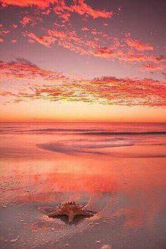 """Red sky at night ~ Mullaloo Beach, Western Australia"" Beautiful Sunset, Beautiful Beaches, Beautiful World, All Nature, Jolie Photo, Western Australia, Australia Beach, Australia Travel, Wonders Of The World"