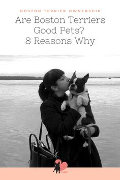 Here are 8 reasons why Boston Terriers make a great pet, for families, first-time owners, or when living in an apartment or otherwise! #bostonterrier #bostonterriersaspets #bostonterrierdog #bostonterrierpet  #bostonterrierbehaviour #bostonterrierpersonality #bostonterriertemperament  #bostonterrierlove #bostonterrierowner #owningabostonterrier #dogbehaviour #doglove #dogbond #dogbonding #dogmom #dogowner #dogtemperament
