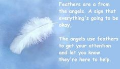 Angels White Feathers Feathers are from the Angels. A sign that everything's going to be okay. The Angels use feathers to get your attention and let you know they're here to help.