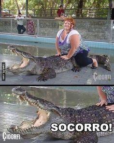 Domando un cocodrilo