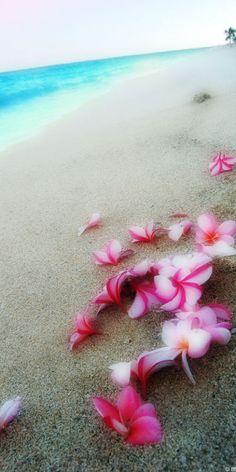 Fragapani Beach, Hawaii