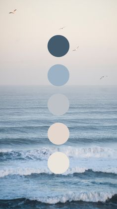 Sunrise at the Beach Color Palette by Amari Creative Brand Studio #color #colorpalette #beach #sunrise #brandcolors #branding