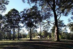 Robinsons Run, a Kangaroo Valley House Nsw Holidays, Holiday Accommodation, Kangaroo, Sidewalk, Coast, Cottage, Explore, Plants, Baby Bjorn