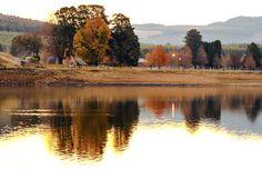 Lake Merthlerly-Greytown