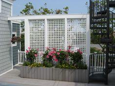 nice 44 Easy And Cheap Backyard Privacy Fence Design Ideas Cheap Privacy Fence, Privacy Fence Designs, Garden Privacy, Privacy Screen Outdoor, Backyard Privacy, Backyard Fences, Deck Privacy Screens, Privacy Planter, Desert Backyard