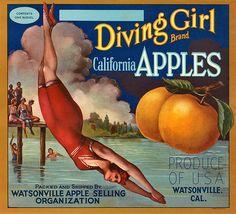 Vintage Fruit Crate Label.
