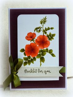 this is the Sweetbriar Rose Stamped in Sahara Sand on Whisper White cardstock then colored with Blendabilitiies. Card Tags, I Card, Poppy Cards, Fall Cards, Sympathy Cards, Flower Cards, Greeting Cards Handmade, Homemade Cards, Stampin Up Cards