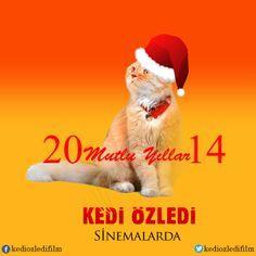 #KediÖzledi ailesi olarak herkese mutlu bir yıl dileriz.