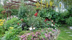 suomalainen puutarha - Google-haku