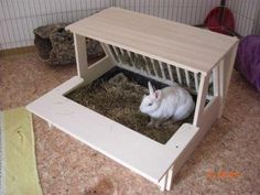 Structural litter box with built-in hay rack. Secure a seagrass or timothy mat to the roof and it's bunny lookout platform, too.