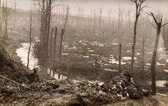 A German photograph featuring scene after the battle at Ancre on the Somme during World War One circa 1917