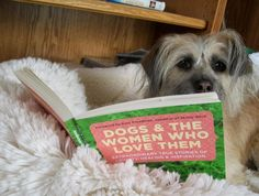 Cheryl Copenhagen's dog Kirby love DOGS AND THE WOMEN WHO LOVE THEM!