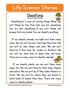 This Classifying Life Science Reading Comprehension Worksheet will help your students build their reading comprehension skills while reading about what it means to classify. First Grade Reading Comprehension, Phonics Reading, Reading Comprehension Worksheets, Teaching Reading, Reading Passages, Science Lessons, Teaching Science, Life Science, Science Worksheets