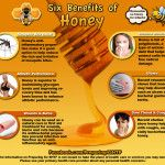 The Survival Doctor Ultimate Emergency Medical Infographic Chart for Honey