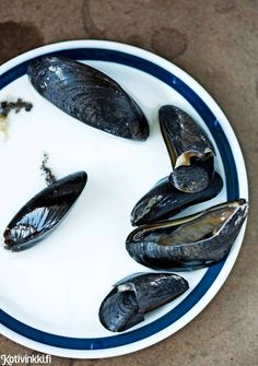 / Mussels, delicious and beautiful. Mussels, Food Styling, Recipes, Accessories, Beautiful, Ripped Recipes, Cooking Recipes, Clams
