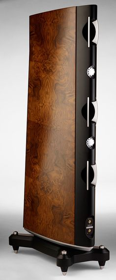 Description The Raidho Acoustics D-2.1 is a floorstanding loudspeaker with two…