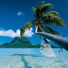 Tahiti.   Would love to relax in this hammock.
