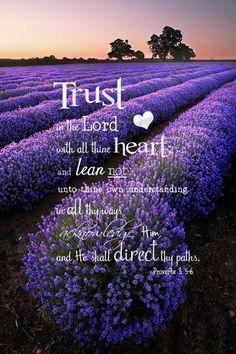 Proverbs 3:5-6...