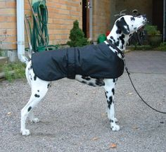 Noppa's Sewing Club: Quick Dog Coat Pattern    Here's a nice looking winter dog coat that you can make using fabric from your old rain coat