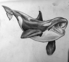 orca - smart, strong and sweet Pencil Drawings Of Animals, Pencil Art Drawings, Cool Drawings, Art Sketches, Drawing Animals, Whale Sketch, Whale Drawing, Bird Sketch, Orca Tattoo
