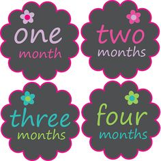 Monthly Baby Stickers Baby Month Stickers by BabyBellyStickers