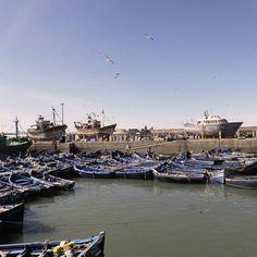 Let's charge with some fresh energy from the ocean. #moroccoobjectif #linkinbio #essaouira #atlanticocean #morocco #moroccotravel #seafood Morocco Desert Tours Marrakech desert Trips www.morocco-objectif.com https://www.youtube.com/watch?v=L5YLOQeiIeM