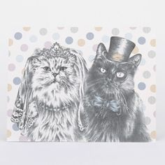 NEW ARRIVALS | 'A Moggie Marriage' Handmade Cat Greetings Cards for the pet-lover in your life by illustrator Katrina Wight - each one is a mini-masterpiece! Shop them all now in store #cats #catlovers #cute #cards #art #catart #illustration #greetings #petlovers