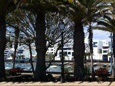 Fishing port in Arrecife, Lanzarote