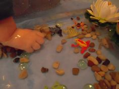 Frog pond water sensory tub. Easy to put together. Fun sensory and imaginative play with lots of opportunities for language extension and storytelling as well.