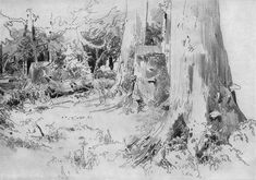 Carved wood (sketch and study) - Ivan Shishkin