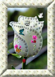 Allah Wallpaper, Islamic Wallpaper, Allah Calligraphy, Islamic Art Calligraphy, Mom Dad Tattoos, Allah Names, Lion Pictures, Allah Islam, Kittens Playing